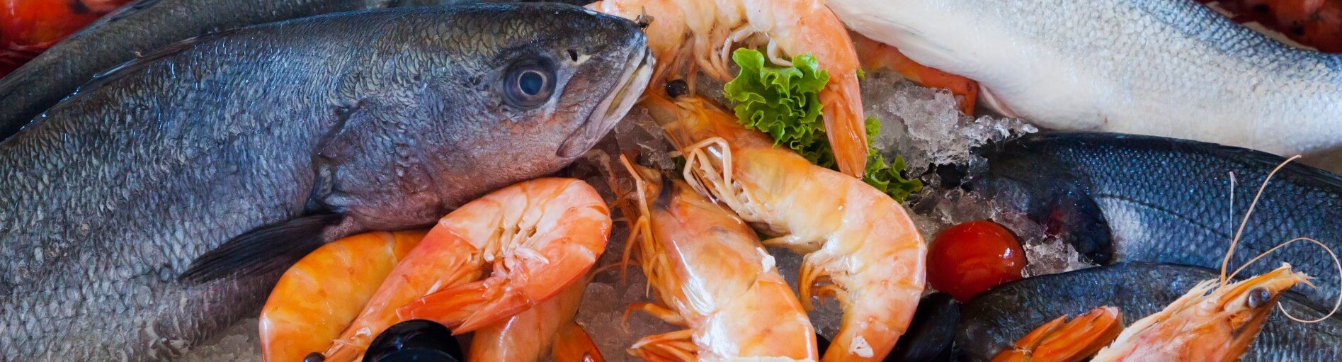 fiskekasser - Fiskekasser